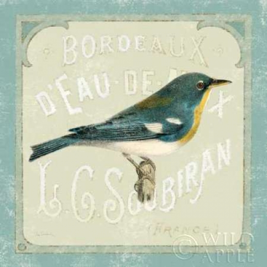 Parisian Bird I Poster Print by Sue Schlabach