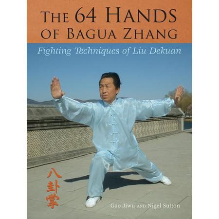 The 64 Hands of Bagua Zhang : Fighting Techniques of Liu