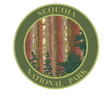 Explore Sequoia National Park 3.5