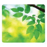 Fellowes Recycled Mouse Pad, Nonskid Base, 9 x 8 x 1/16, Leaves -FEL5903801