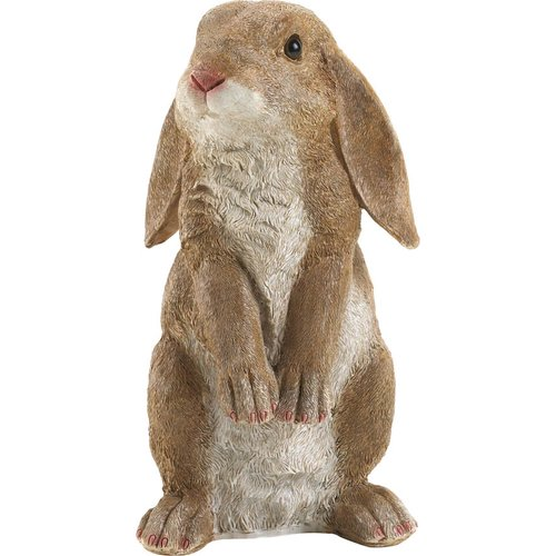 Zingz & Thingz Curious Rabbit Garden Statue by Zingz & Thingz
