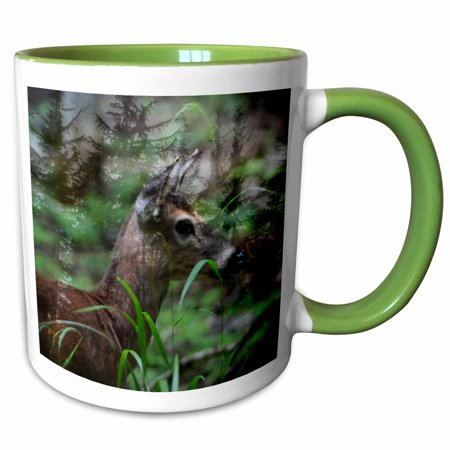 3dRose Spirit Deer is a photo of a deer with added special effects - Two Tone Green Mug,