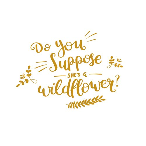 Harriet Bee Do You Suppose She is a Wildflower Quote Alice In Wonderland Nursery Wall Decal