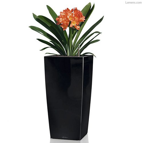Lechuza Cubico Self-Watering Plastic Pot Planter