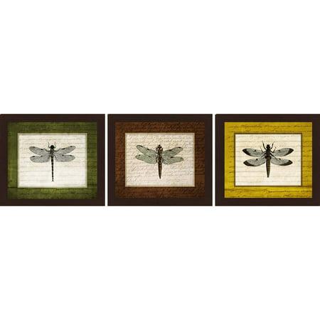 Dragonfly 14