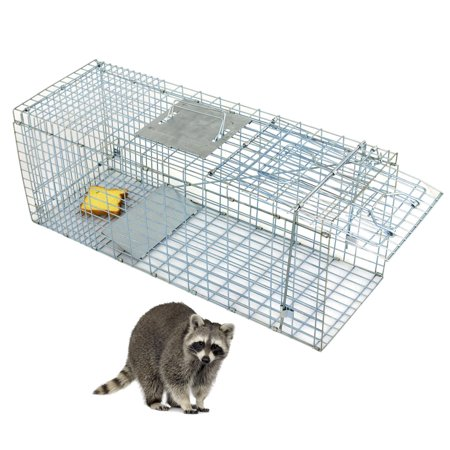 "Zeny Humane Small Live Animal Control Steel Trap Cage 31""x12.5""x12"" Raccoon Skunk Cat"