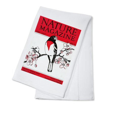 Nature Magazine - View of a Red-Breasted Robin on a Blossoming Branch (100% Cotton Kitchen Towel)