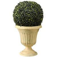 "24"" Boxwood Single Ball Topiary"