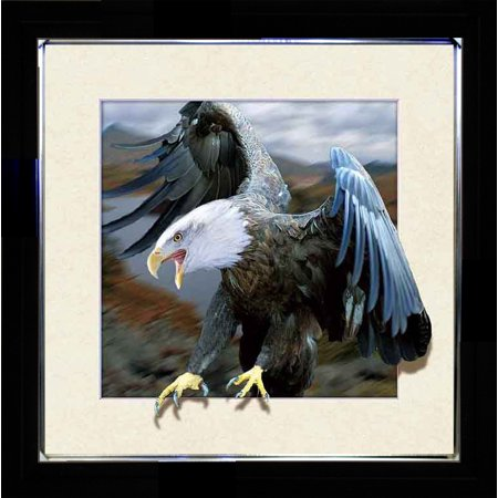 LANDING BALD EAGLE SINGLE 3D LENTICULAR ART PICTURE FRAME ZOOMING 3D EFFECT WALL DECOR