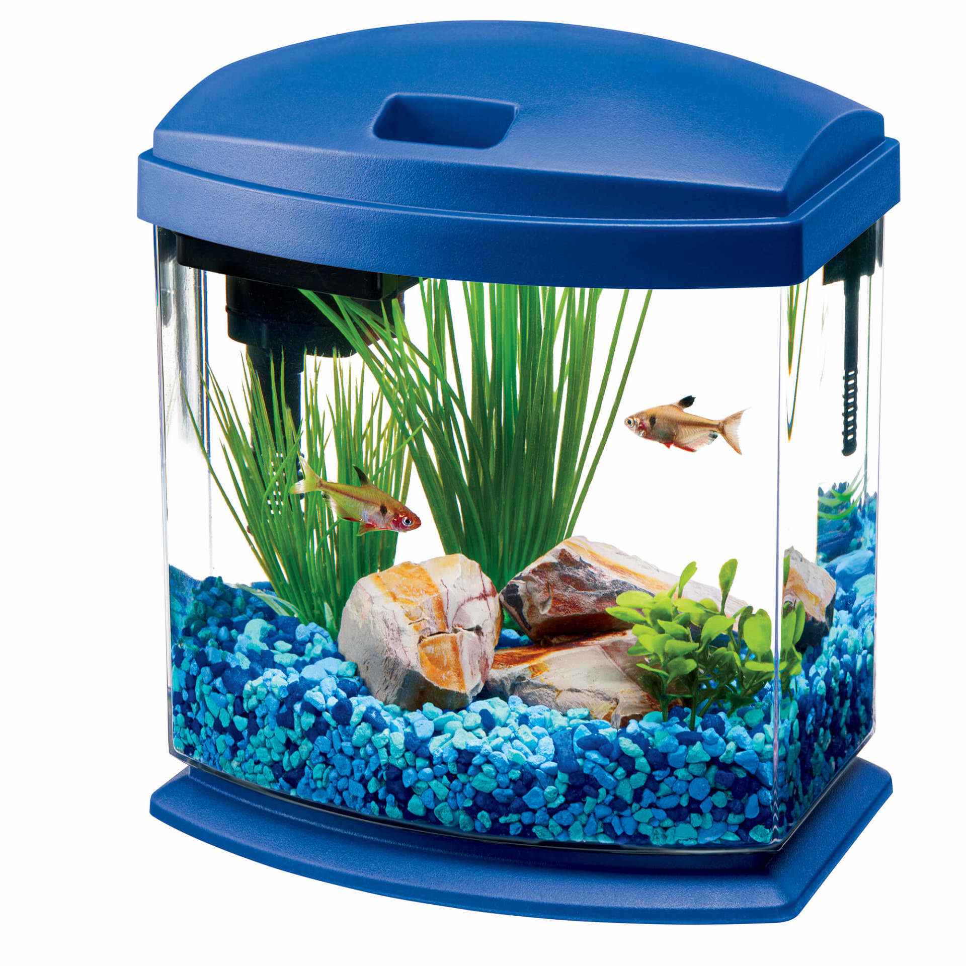 Aqueon MiniBow Aquarium LED Starter Kit, 1 Gallon, Blue