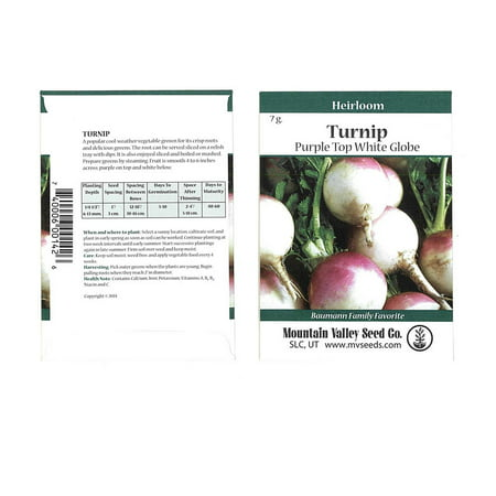 Turnip Garden Seeds - Purple Top White Globe - 7 g Packet - Non-GMO, Heirloom Vegetable Garden & Microgreens Seeds
