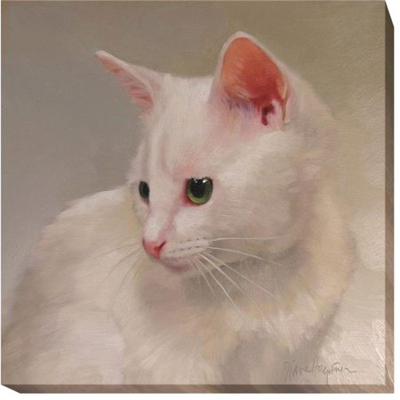 White Kitten by Diane Hoeptner Premium Gallery-Wrapped Canvas Giclee Art - 12 x 12 x 1.5 in. - image 1 de 1