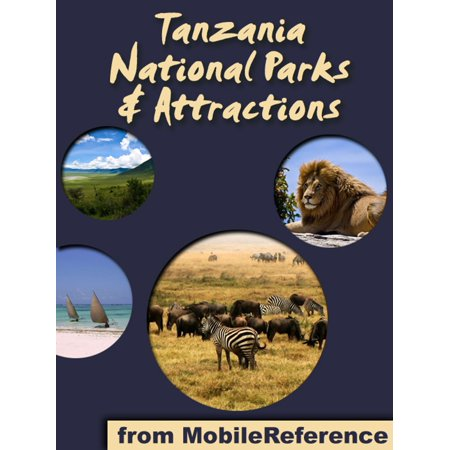 National Parks & Attractions in Tanzania: a travel guide to the top 15+ national parks & attractions in Tanzania, Africa -