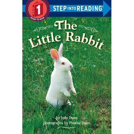 The Little Rabbit (Little Grey Rabbit)