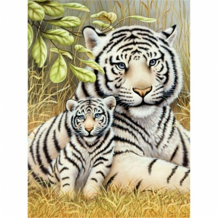 Tiger Kit (Junior Small Paint By Number Kit 8.75X11.75-White Tiger)