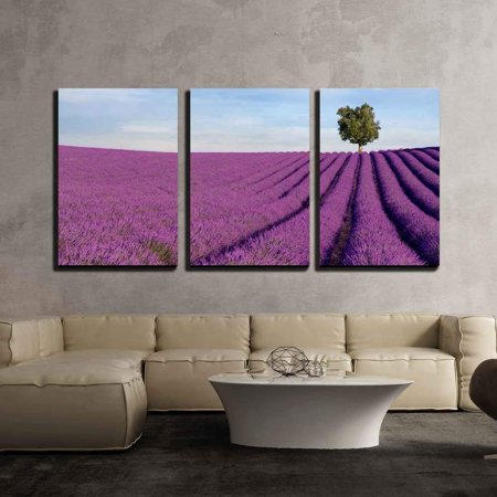 """wall26 - 3 Piece Canvas Wall Art - Rich Lavender Field in Provence, France, with a Lone Tree in The Background - Modern Home Decor Stretched and Framed Ready to Hang - 24""""x36""""x3 Panels"""