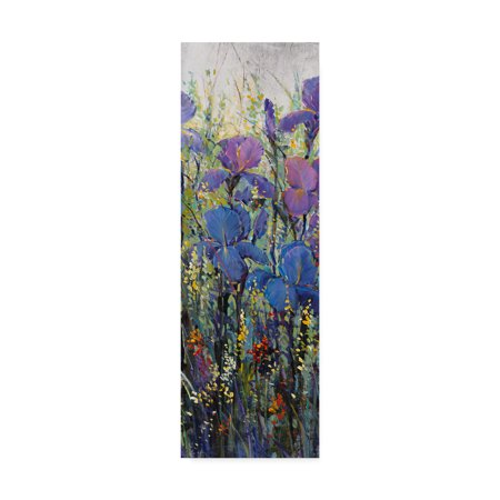 Art Tin - Trademark Fine Art 'Iris Field II' Canvas Art by Tim OToole