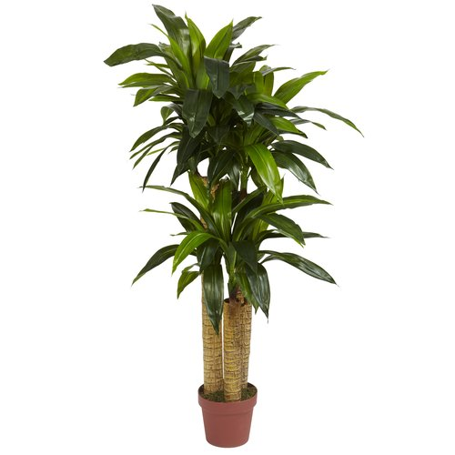 Nearly Natural 4 ft. Corn Stalk Dracaena Silk Plant