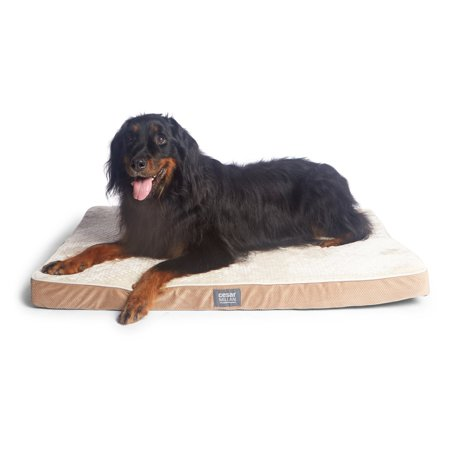 Cesar Millan Ortho Comfort Mat Dog Bed