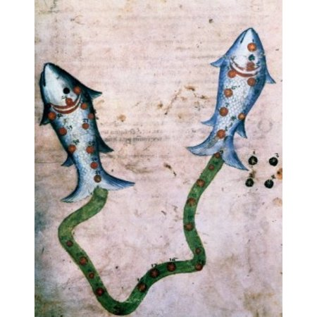 Pisces Or Fish Signs Of The Zodiac By Artist Unknown  From Atlas Celeste De Strabov  Canvas Art     18 X 24