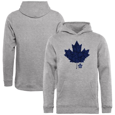 sports shoes 132e0 23355 Toronto Maple Leafs Youth Hometown Collection Leafs Pullover Hoodie - Ash