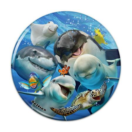Shark Magnet (Ocean Selfie Shark Dolphin Sea Turtle Stingray Clown Fish Kitchen Refrigerator Locker Button Magnet - 1