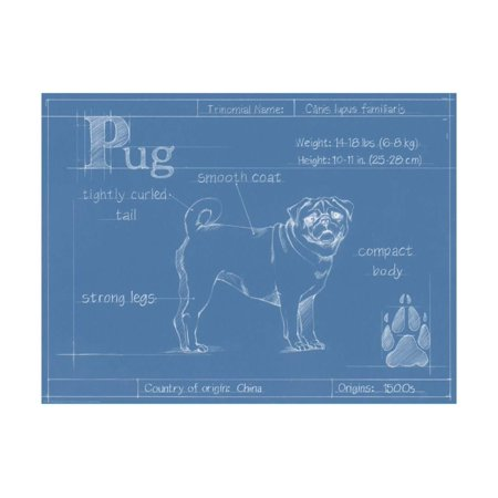 Blueprint Pug Print Wall Art By Ethan - Pug Pop Art