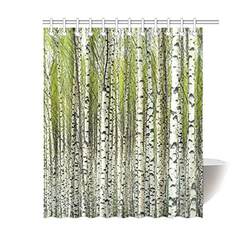 GCKG Home Bath Decor Fabric Green Birch Tree Shower Curtain Hooks 60x72 Inches Bare Trees With Fresh Leaves In Spring Curtains