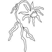 """Joggles Cling Stamp 2.25""""X3.5""""-Funky Flower #2"""