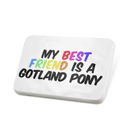 Porcelein Pin My best Friend a Gotland Pony, Horse Lapel Badge – NEONBLOND (Pony Pie)