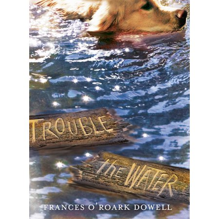 Trouble the Water (Bridge Over Troubled Water Best Version)
