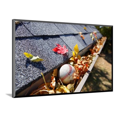 Rain Gutter Full of Autumn Leaves with a Baseball Wood Mounted Print Wall Art By soupstock
