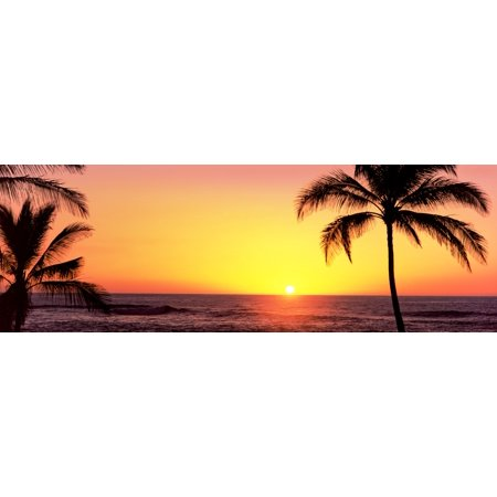 Panoramic Images Stretched Canvas Art - Palm trees at the coast at sunset, Waikoloa, Hawaii County, Hawaii, USA - Medium 6 x 18 inch Wall Art Decor ...