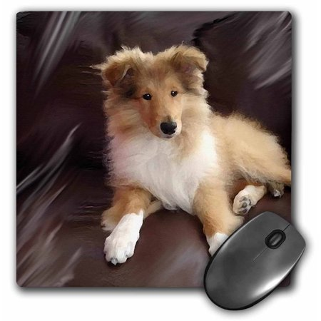 3dRose Rough Collie Puppy, Mouse Pad, 8 by 8 -