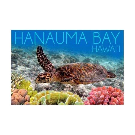 Hanauma Bay, Hawai