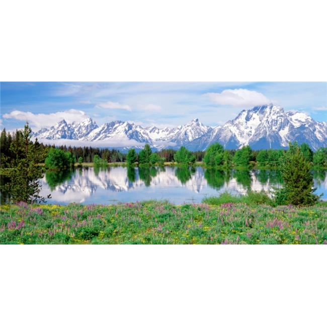 Biggies, Inc. WM-MFW-120 Wall Murals - Mountain Flowers  -Extra Large