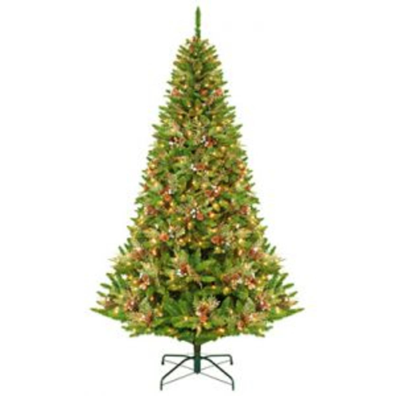 Gki Bethlehem Lighting Christmas Trees