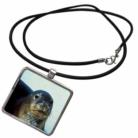 3dRose Hawaiian Monk Seal - Necklace with Pendant (ncl_49319_1)