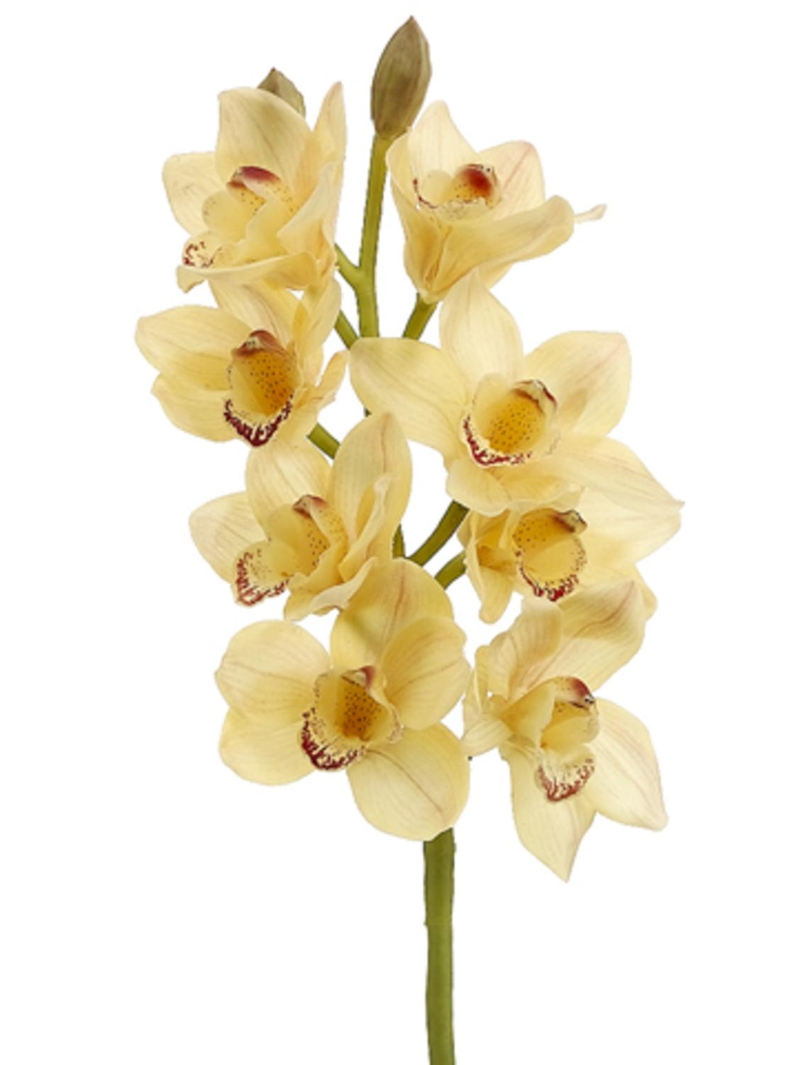 Pack Of 6 Artificial Soft Yellow Cymbidium Orchid Silk Flower Sprays