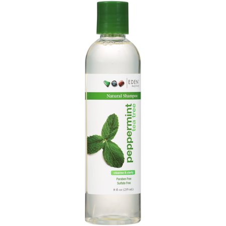Eden BodyWorks Natural Shampoo, Peppermint Tea Tree, 8 Oz