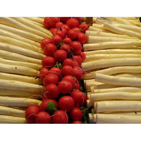 Canvas Print Vegetables Radishes Asparagus Eat Vegetable Market Stretched Canvas 10 x 14
