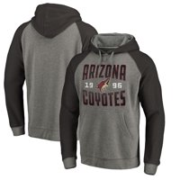 Arizona Coyotes Fanatics Branded Timeless Collection Antique Stack Tri-Blend Raglan Pullover Hoodie - Ash