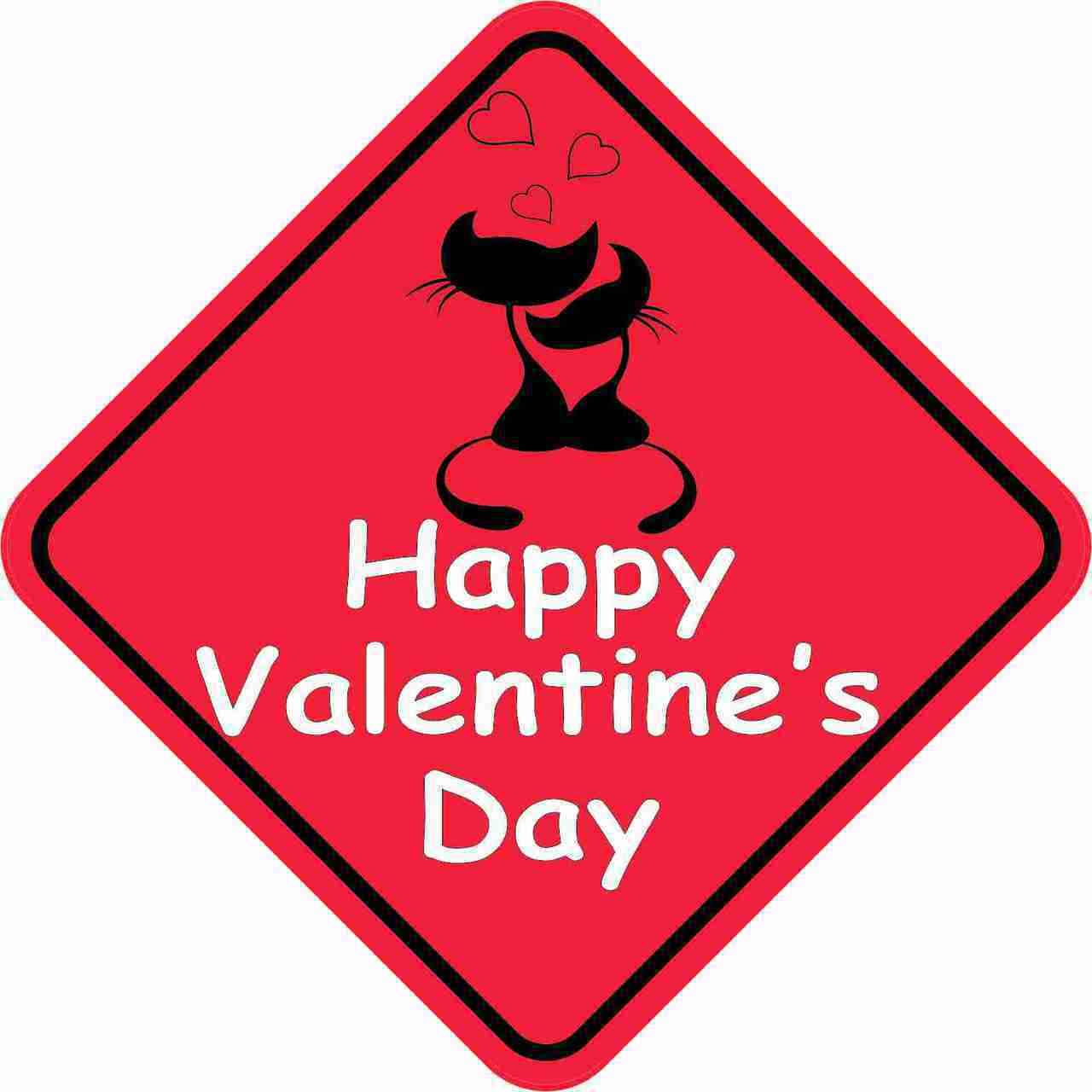 5in x 5in Happy Valentines Day Bumper Magnet Vinyl Magnets Magnetic