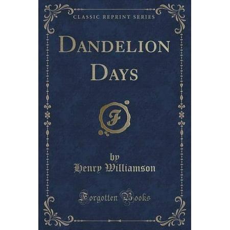 Dandelion Days  Classic Reprint