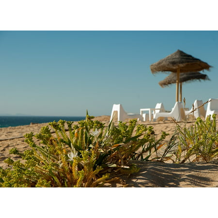 Canvas Print Seaside Ocean Beach Terrace Parasol Stretched Canvas 10 x 14 (Seaside Terrace)