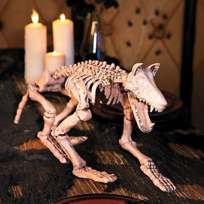 IN-13749727 Halloween Skeleton Wolf for $<!---->