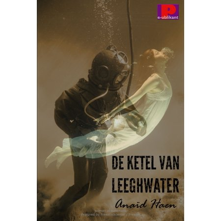 De ketel van Leeghwater - eBook (Ketel One Vodka)
