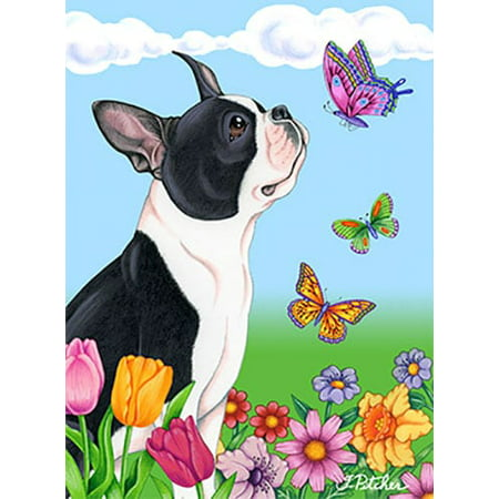 Boston Terrier - Best of Breed Butterfly House -