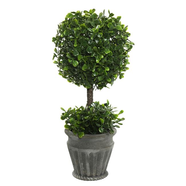 13 in. Boxwood Topiary in Container