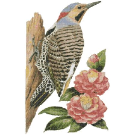 Tiger Cross Stitch Pattern - Alabama State Bird and Flower Yellowhammer Woodpecker (Northern Flicker) and Camellia Counted Cross Stitch Pattern